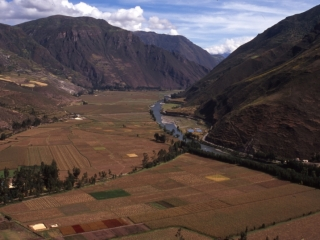 Cultivated fields Urubamba Valley-Peru