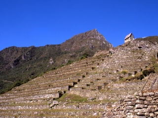 Terraced agricultural zone & Watchman's Hut-Machu Picchu