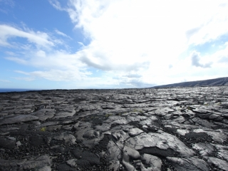 Lava field (dig)-Chain Of Craters Road, Hawaii