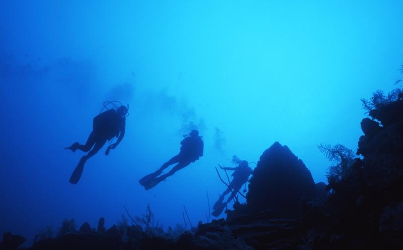 Diver silhouette-San Andreas Island