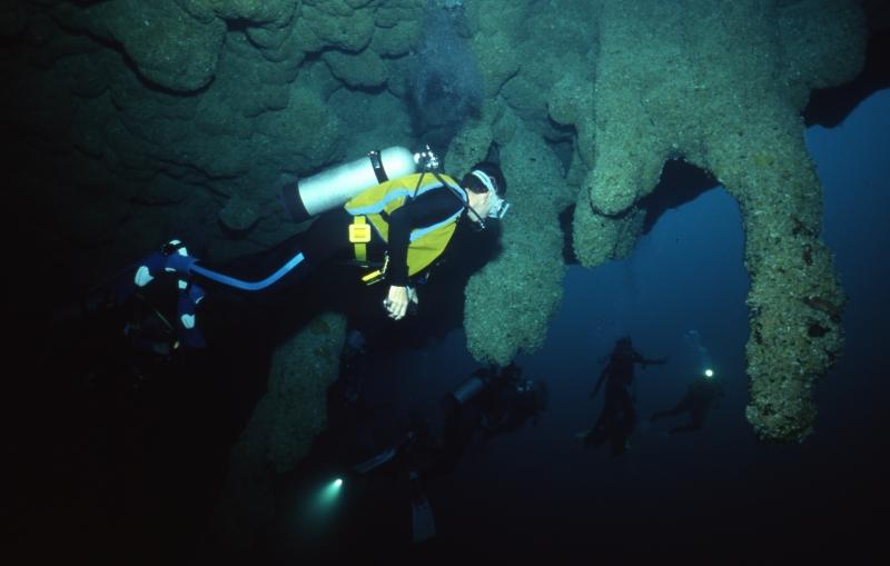 Stalactites & divers-Blue Hole, Belize