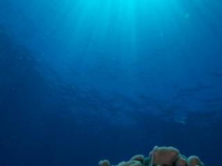Sunburst over reef (dig)-Fiji