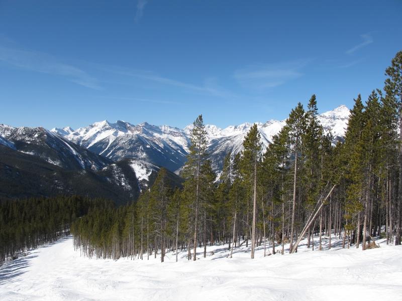 Bending ski trail-Panorama, B.C.