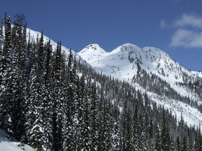 Great Northern slope (dig)-Trout Lake, British Columbia