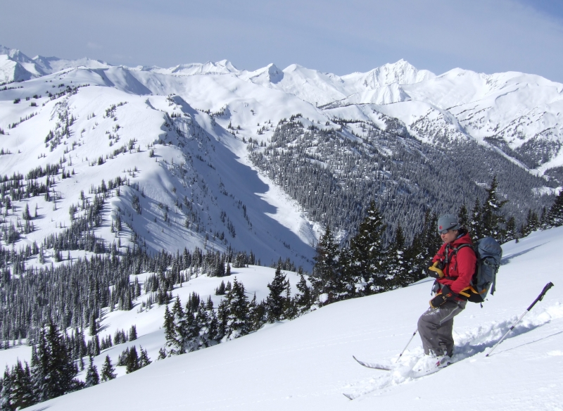 Mountains & guide at Selkirk Wilderness Skiing (dig)