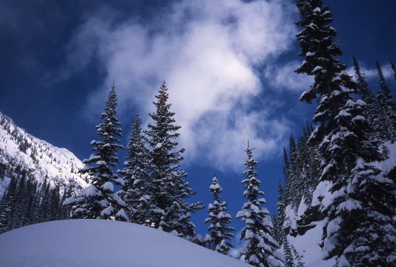 Selkirk Mountains scene-Great Northern Snow-Cat Skiing