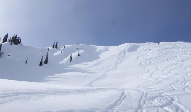 Selkirk Wilderness Skiing bowl (dig)