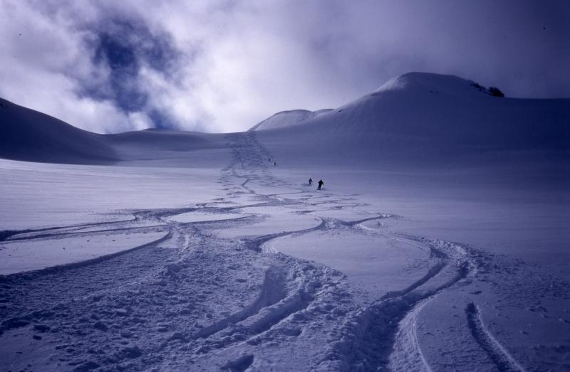 Tracks at Tyax Lodge Heli-Skiing-Chilcotin Mountains