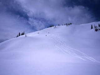 Selkirk Mountains slope-Great Northern Snow-Cat Skiing