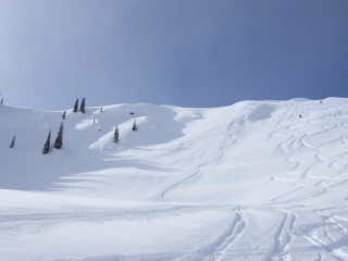 Selkirk Wilderness Skiing bowl (dig)