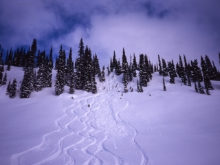 Ski tracks at Great Northern-Selkirk Mountains