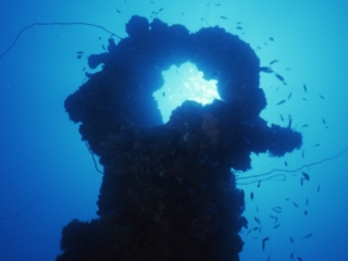 Heart-shaped ring on Unkai Maru-Truk Lagoon