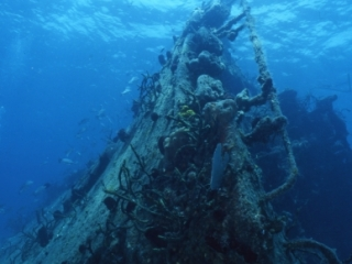 Sparta wreck-Cuba